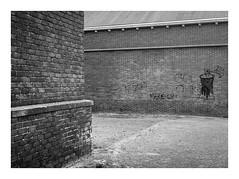 Zeeland (sw188) Tags: holland zeeland sw street industrielandschaft industriegebiet hafen bw blackandwhite