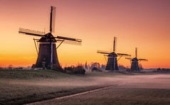 3 on a row (reinaroundtheglobe) Tags: windmill reflection waterreflections driemanspolder nederland holland dutch dutchlandscape sunrise landscape reiniersnijders reinaroundtheglobe tranquility orange fog