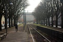 Back on the tracks (blondinrikard) Tags: spår tracks majorna allé trees göteborg gothenburg