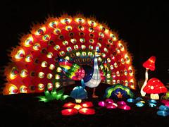 OH Columbus - Ohio Chinese Lantern Festival 45 (scottamus) Tags: columbus ohio franklincounty ohiochineselanternfestival dragonlightscolumbus holiday winter christmas light display show event night