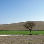 Paesaggio minimale in Toscana thumbnail