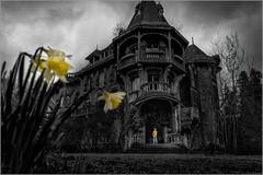 Les jardins du Colimaçon (kalzennyg) Tags: kalzennyg colimaçon joachimkroll manoir manion rurbex urbex dark gothic artnouveauarchitecture