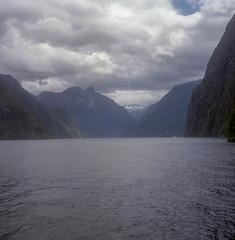 Milford Sound (BunnySafari) Tags: yashicamat124g milfordsound newzealand january14 southisland stunninglandscape 2018 fuji400 film boattour