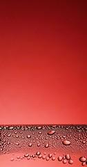 365 - Image 092 - Red... (Gary Neville) Tags: 365 365images 6th365 photoaday 2019 sony sonycybershotrx100vi rx100vi vi raynox garyneville