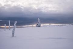 Paysage hohneck (Manonlemagnion) Tags: neige montagne paysage hohneck nature vosges givre matin blanc lumière nuages froid hiver nikond810 1635mmf4