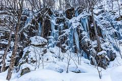 freezing there... (Masa_N) Tags: 十和田市 青森県 日本 jp oirase rock ice winter snow