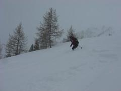 Almenparadies & Pulvergenuss im Ahrntal - Jänner 2019 (Globo Alpin) Tags: ahrntal skitouren winter 2019 primus