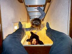 Huawei 2019 02 20 (Sibokk) Tags: anna camera digital huawei lou mobile photography scotland selfie uk edinburgh