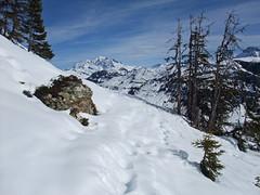 DSCF3740 (Laurent Lebois ©) Tags: laurentlebois france nature montagne mountain montana alpes alps alpen paysage landscape пейзаж paisaje savoie beaufortain pierramenta arèchesbeaufort