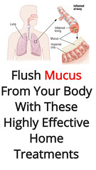 Flush Mucus From Your Body With These Highly Effective Home Treatments (Evidence Based) (healthylife2) Tags: flush mucus from your body with these highly effective home treatments evidence based