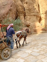 P E T R A (alyssaBLACK.) Tags: middleeast travel people sunlight light horse jordan petra
