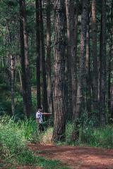 Vietnam, DaLat, July 2018 (Nabbed.Film) Tags: forest trees vietnam fujifilm