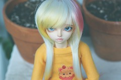 [015/365] Cerin (Ise-Bandit) Tags: abjd bjd asian ball joint doll dollfie resin fairyland fl minifee mnf ryeon cerin