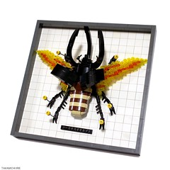 Chalcosoma caucasus (Takamichi Irie) Tags: wild brick animal chalcosomacaucasus beetle insect bug lego