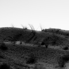 Desert Lands 002 (noahbw) Tags: anzaborregodesertstatepark california d5000 nikon abstract autumn blackwhite blackandwhite bw desert hills landscape minimal minimalism monochrome natural noahbw quiet shadow sky square still stillness