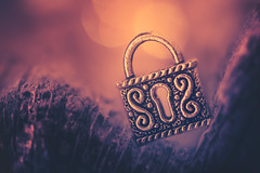 Padlock (Ro Cafe) Tags: hole mm macro macromondays nikkor105mmf28 sonya7iii padlock miniature bokeh
