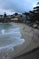 IMG_9764 (mudsharkalex) Tags: california pacificgrove pacificgroveca loverspointpark loverspointbeach beach