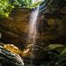 Anglin Falls in summer