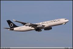"AIRBUS A340 313 ""STAR ALLIANCE"" D-AIGP 0252 Frankfurt septembre 2018 (paulschaller67) Tags: airbus a340 313 staralliance daigp 0252 frankfurt septembre 2018"