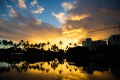 Ala Moana Beach Park Honolulu Hawaii (Anthony Quintano) Tags: hawaiianislands hawaii alamoanabeachpark palmtrees oahu sunset hawaiisunset reflections cloudporn hawaiiweather