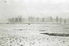 Winter, snowflakes, blizzard (g.bikmanis) Tags: nikonfe2 helios77m4 kentmere400 pan epson v370 winter snow trees field grass fence puddle snowflakes blizzard