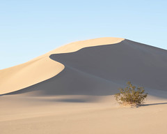 Dune in Clear Light. 2019 (jmswts) Tags: desert dunes landscape minimalism minimal 70200 canon nature