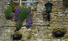 Cottage Wall, Youlgrave (jayteacat) Tags: cottagewall holywelllaneyoulgrave youlgrave youlgreave derbyshire peakdistrict whitepeak nikond810