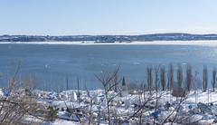 Fleuve Saint-Laurent et Sillery - Québec, Canada  - 0013 (rivai56) Tags: fleuvesaintlaurent sillery québec canada river saintlaurent fleuve photo prise à partir du parc boisdecoulonge