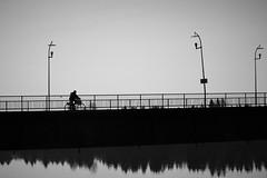 going home (EllaH52) Tags: bridge river water reflections trees streetlights lampposts bicycle ride greyscale monochrome blackwhite minimalism