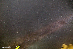 Milky Way on Praia do Forte, BA. (MFMarcelo) Tags: milkyway sky star cloud night tree light slowexposure praiadoforte bahia astrophotography