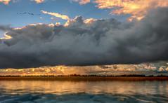 Solitude 659 (Wim Koopman) Tags: clouds cloudage dramatic weather sunset water river estuarium delta relflection light horizon rays mood atmosphere birds flight flying geese contrast