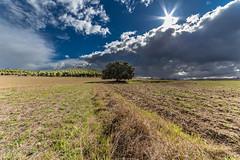 Tarde de tormenta / Stormy afternoon 1 (jdelaobra) Tags: gran angular samyang 14mm f28 ed as if umc ultra wide angle lens landscape paisaje canon6d canoneos6d tormenta storm luz light bright