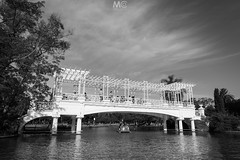 An evening in the park (Mariano Colombotto) Tags: rosedal park parque palermo buenosaires argentina lake water boat sky cielo travel blackandwhite blancoynegro nikon photographer photography city urban trees