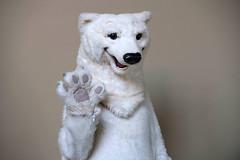 Polar Bear. (LisaDiazPhotos) Tags: aquarium pacific lisadiazphotos
