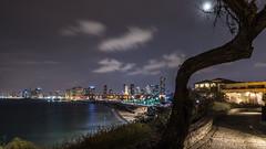 Tel Aviv (Markus Trienke) Tags: isreal telavivyafo telavivdistrict israel il skyline city cityscape night nightphotography moon water sea mediterraneansea clouds longexposure tree