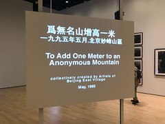 To Add One Meter to an Anonymous Mountain (title) (Paul Keller) Tags: art china museum sanfrancisco sfmoma travel video