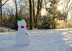 Kids Creation (049/365) (robjvale) Tags: 365the2019edition 3652019 day49365 18feb19 nikon d3200 snowman snow winter sun trees