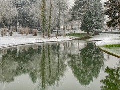 Wemmel , kasteelvijver (foto_morgana) Tags: aurorahdr2019 arbres bomen eau etang hiver invierno iphonexsmax landscape landschap neige outdoor parc park sneeuw snow spiegeling trees vijver water winter pond reflection