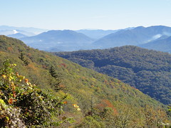 DSC07627 (TerrMys) Tags: northcarolina nc southern appalachians fall autumn october