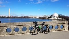 2019 Bike 180: Day 27 - Tidal Basin (mcfeelion) Tags: cycling bike bicycle bike180 2019bike180 washingtondc washingtonmonument tidalbasin jeffersonmemorial