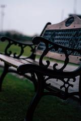 a random bech (hashirpervaiz) Tags: bench park greenery green random raindrops pakistan classic