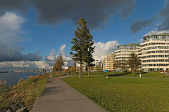 IJpromenade - Amsterdam (Netherlands) (Meteorry) Tags: europe nederland netherlands holland paysbas noordholland amsterdam noord nord north overhoeks ij overhoeksparklaan ijpromenade boulevard grass lawn pelouse appartmentbuildings architecture suburb clouds nuages afternoon aprèsmidi november 2018 meteorry