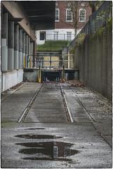 Forgotten Tracks (NoJuan) Tags: abandoned neglected forgotten seattlewa washingtonstate magnusonpark olympuspenf 35100mm panasonic35100 microfourthirds micro43 mirrorless rail railway railroadremnants