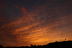 Sunset 3 2 19 #17 (Az Skies Photography) Tags: sun set sunset dusk twilight nightfall sky skyline skyscape rio rico arizona az riorico rioricoaz arizonaskyline arizonaskyscape arizonasunset clouds cloud march 2 2019 march22019 3219 322019 canon eos 80d canoneos80d eos80d canon80d red orange yellow gold golden salmon black arizonasky