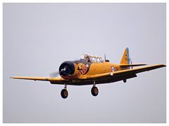 T-6 G Texan - 51-14848 - F-AZBQ (Aerofossile2012) Tags: 2017 meeting airshow laferté avion aircraft aviation toratoratora