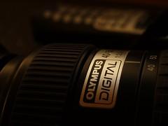 Olympus Digital M.Zuiko 40-150 1:3.5-4.5 (photohml) Tags: olympus zuiko 40150 e330 35mm mzuiko camera kamera ft dslr spiegelreflex fourthirds 43 macro makro nahaufnahme kameraporn cameraporn