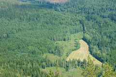 Down below (E. K. Andréasson Photo) Tags: forest nationalpark skuleskogen skuleberget skule view mountain skulemountain ångermanland sweden mountainview downbelow field