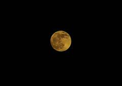 ec lune bretonne (ka.ec) Tags: lune moon cable electrique bretagne yffiniac saint brieuc ciel nuit