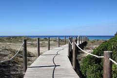 Verso il mare - Toward the sea (Roberto Marinoni) Tags: minorca menorca sonbou spagna spain baleari mare sea maremediterraneo mediterraneansea spiaggia beach