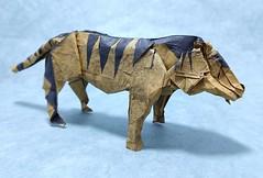 Tiger (Kajmana) Tags: origami papercraft animal tiger cat bigcat feline